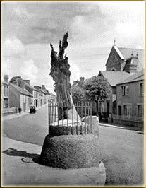 Merlin's Tree Carmarthen (now a roundabout)